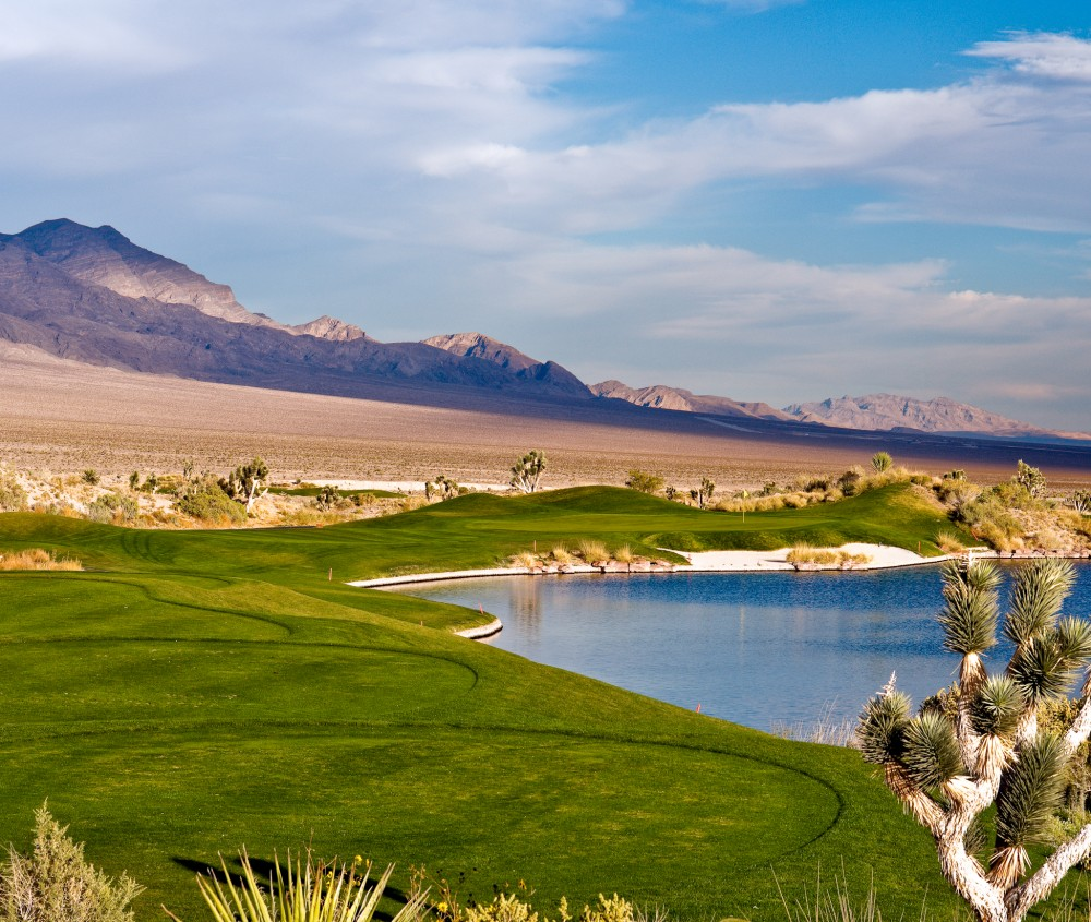 Paiute Vegas Courses