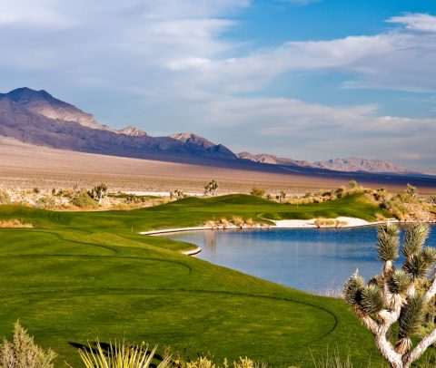 Just Say the Word Then Play the Deal-Golf-A-Palooza At Paiute