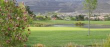Do You Have Short Game? Play in SNGA Championship